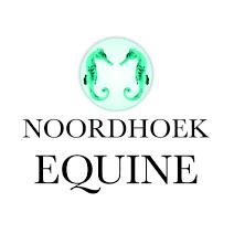 Noordhoek Equine